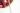 pikwizard-fb3215ebe5992a82bca275650d207a01